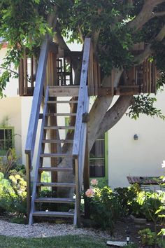 After a swim in their gorgeous pool and some sandbox time, Molly's kids can retreat to this terrific treehouse. From Three Generations Living Together in Beverly Hills in Los Angeles, California.