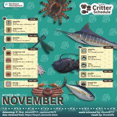 Animal Crossing Fish, Animal Crossing Guide, Red King Crab, Sea Pig, Angel Fish, Animal Games, Like Animals, November