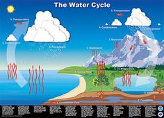 Water Cycle Lessons, Activities, and Multimedia from NOAA.gov