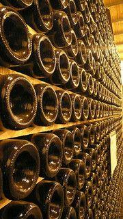 wine wine wine.....