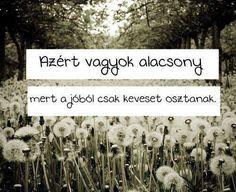A jóból kevés is elég! Humor, Memes, Funny, Quotes, Life, Outdoor, Random Stuff, Design, Quote