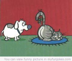 funny-christmas-cartoon-cat.jpg (482×408)