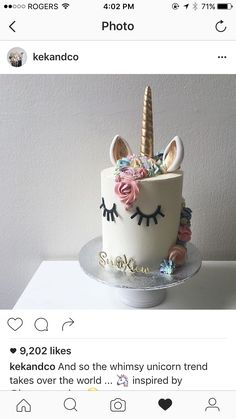 Unicorn themed first