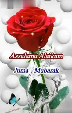 Assalamu Alaikum Jumma Mubarak, Jummah Mubarak Messages, Jumma Mubarak Quotes, Juma Mubarak Images, Cute Romantic Quotes, Beautiful Love Pictures, Love In Islam, Animal Crafts For Kids, Islamic Wallpaper