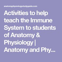 Activities to help teach the Immune System to students of Anatomy & Physiology | Anatomy and Physiology Study Guide