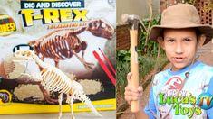 Digging for dinosaur fossils: Dig and Discover T Rex excavation kit for kids Dinosaur Dig, Dinosaur Fossils, Kits For Kids, T Rex, Dinosaurs