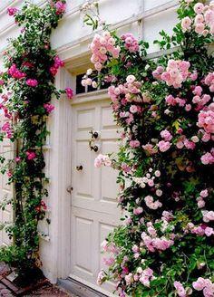 Roses frame a garage door