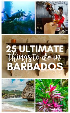 Come to Barbados for the beaches, stay for the culture, wildlife, and stellar views. #Barbados #Caribbean #travel #traveltips #bucketlist #wanderlust #adventure #beach