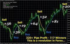 200 pip Daily Profit Current Time, Things To Buy, Goals