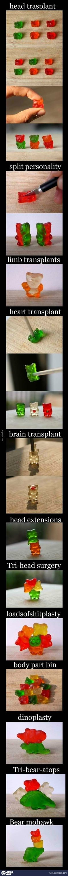 Gummy Bear Transplants. Who sends thus much time doing this?  I have already eaten the whole bag