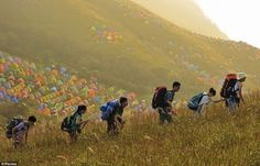 Pitch Your Tent! An International Camping Festival in China Promotes a Green Ethos