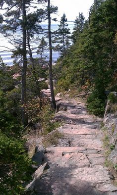 Bass Harbor, Maine...trail to rocky ledge for shots of the Bass Harbor lighthouse