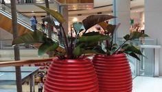 Blumenkübel / Pflanzgefäß TOP POT SERRALUNGA versch. Farben kaufen im borono Online Shop