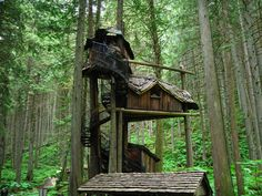 Treehouse Design Ideas That Are Nice Than Your House