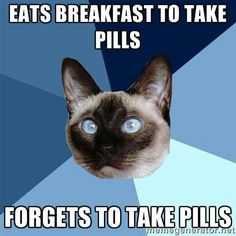 Eats breakfast to take pills...forgets to take pills | Chronic Illness Cat