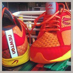 @xriddler's photo: New running shoes, new way of #running #newton #newtonrunning #myfirstironman #training