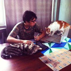 Mengatasi Kucing Muntah: Penyebab Kucing Muntah-Muntah