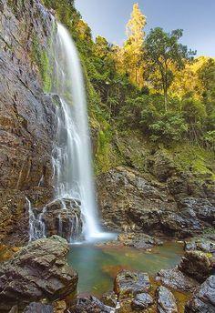 Travel: Cedar Falls, Dorrigo National Park, NSW