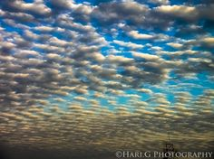 RT @Hari_G1495: Amazing Cirrocumulus cloud formation!  #StormHour @StormHour #photography @EarthandClouds https://t.co/qTZZnyYD25
