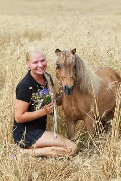 Mushroom dilution ?Heste salg - Amerikanske Miniature Horse Hest Rusland Pony Til salg Sweet-Park Billy-Boy