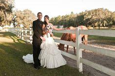 horse farm wedding in Florida