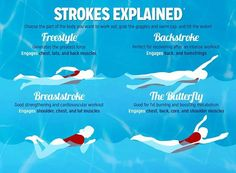Different Swimming Strokes Swimming Strokes Explained I Love Swimming, Swimming Diving, Swimming Tips, Swimming For Fitness, Benefits Of Swimming, Swimming Styles, Swimming For Beginners, Swimming Sport, Open Water Swimming