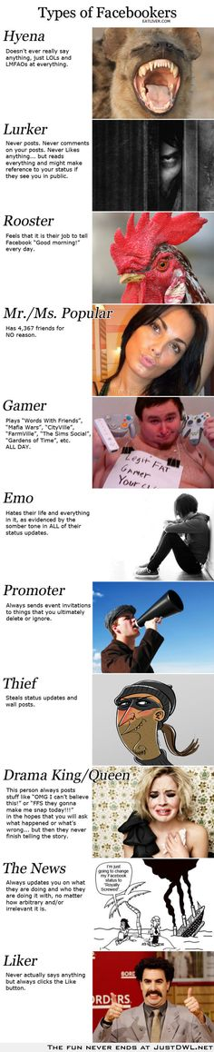 Types of Facebookers Which one are you? Comment below