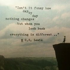 Isn't it funny how day by day nothing changes but when you look back everything is different. - C. S. Lewis #literary #quotes