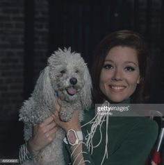 English actress Diana Rigg pictured with her pet poodle in Get premium, high resolution news photos at Getty Images Emma Peel, The Avengers, Avengers Images, Evil Under The Sun, Diana Riggs, Dame Diana Rigg, Uk Tv Shows, Doctor Who Episodes, Tv Awards