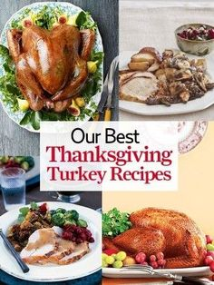 Best Turkey Recipes for Thanksgiving