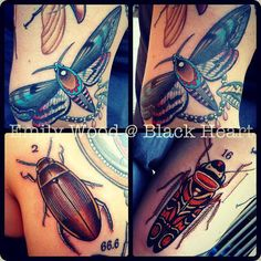 Various bugs by Emily Wood - Black Heart Tattoo Studio, Epsom, UK Emily Wood, Black Heart Tattoos, Tattoo Studio, Bugs, Beetle, Insects