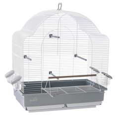 Liberta Riviera Ice Saint Maxime Large Bird Cage Cage With Open Front. Part of the Riviera range, the Liberta Riviera Ice Saint Maxime Large Bird Cage Cage With Open Front provides a classic solution to your bird care needs. Small Bird Cage, Large Bird Cages, Small Birds, Neutral Color Scheme, Budgies, Parakeet, Simple Designs, Living Spaces, House Design