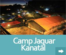 kanatal is one of the best place for camping in uttarakhand near mussoorie. Kanatal camp are located on chamba mussoorie high way just 40 km from mussoorie and 15 km chamba.