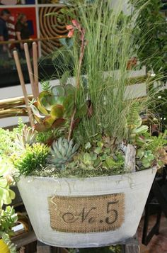 Succulents and tall grasses with adorable burlap and tin - love the textures, dimension and design!