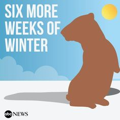 Punxsutawney Phil sees his shadow, predicts #SixMoreWeeksofWinter http://abcn.ws/1CprpjS