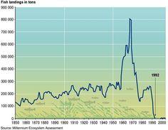 'Peak oil' a certainty, just as was 'peak cod'