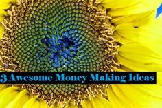 """""""how to make money"""" You might have noticed that in all of my previous posts I mentioned tips on how to make money using your inborn or acquired skills. But today's post will try to help you with some great money making ideas and it is possible that these ideas are quite new to you. Don't worry; I will be passing on information about learning these new methods too."""