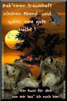 gute nacht Freunde , bis morgen - http://guten-abend-bilder.de/gute-nacht-freunde-bis-morgen-53/