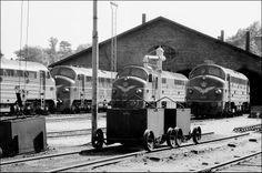 Remisen i Helsingør 1971