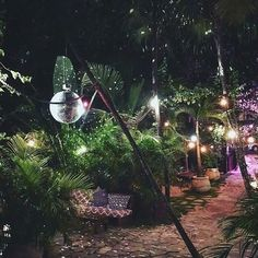 The outdoor pergolas are quite popular these days. Everyone wants to create a place where they could relax and recharge themselves and outdoor pergolas are perfect place to do it. Neon Jungle, Jungle Party, Jungle Theme, Disco Theme, Disco Party, Disco Ball, Unique Gardens, Beautiful Gardens, Tulum Beach