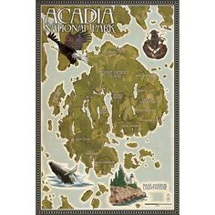 Acadia National Park, ME - Map - LP Artwork (Light Switchplate Cover)