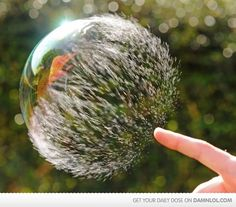 Popped bubble, midburst