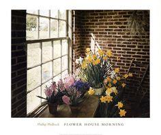 Flower House Morning