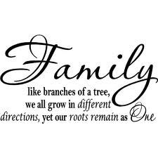 Family like branches of a tree, we all grow in different directions, yet our roots remain as one.