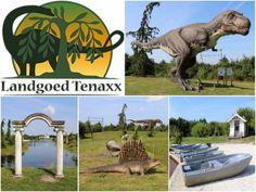Verslag + Veel foto's van een bezoek aan Dinopark Landgoed Tenaxx (Groningen)