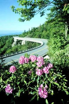 Views from the Blue Ridge Parkway, Blowing Rock, North Carolina Blue Ridge Parkway, Blue Ridge Mountains, Great Smoky Mountains, South Carolina, North Carolina Homes, Carolina Blue, Great Places, Places To See, Beautiful Places