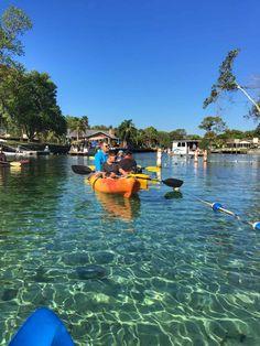 Things To Do in Crystal River, Florida 8 Things To Do in Crystal River, Florida Crystal Lake Florida, Crystal Springs Florida, Florida Springs, Florida Travel, Florida Beaches, Florida Tourism, Florida Keys, Lake Life, Adventure Awaits