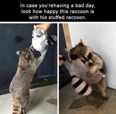 34 Funny Animal Memes - Funny Animal Quotes - - 34 Funny Animal Memes The post 34 Funny Animal Memes appeared first on Gag Dad. Funny Animal Jokes, Cute Funny Animals, Funny Cute, Cute Dogs, Funny Memes, Funniest Memes, Funny Videos, Funny Fails, Funny Dogs