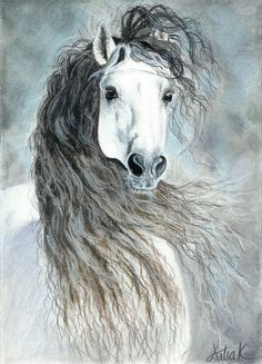 Andalusian horse by ArtiaWolf on DeviantArt