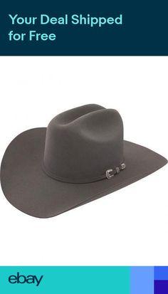 fc8e1da17cd Stetson Cowboy Hat 6X Beaver Fur Dr.Grey SKYLINE With Free Hat Brush+No